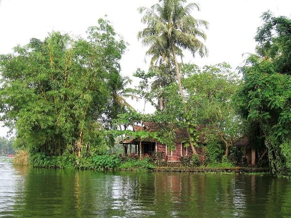 Kérala cocotiers et maison sur une île