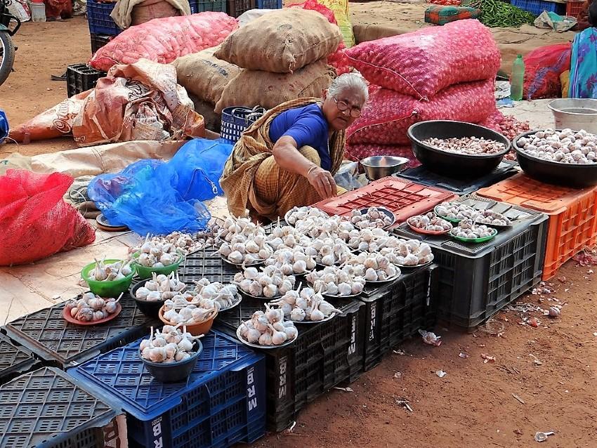 Inde vieille vendeuse d'aulx sur un marché