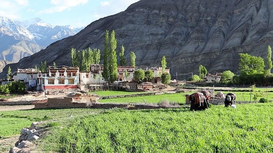 Village du Ladakh