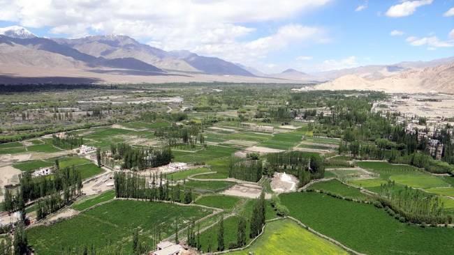 Ladakh vallée avec des parcelles vertes de cultures