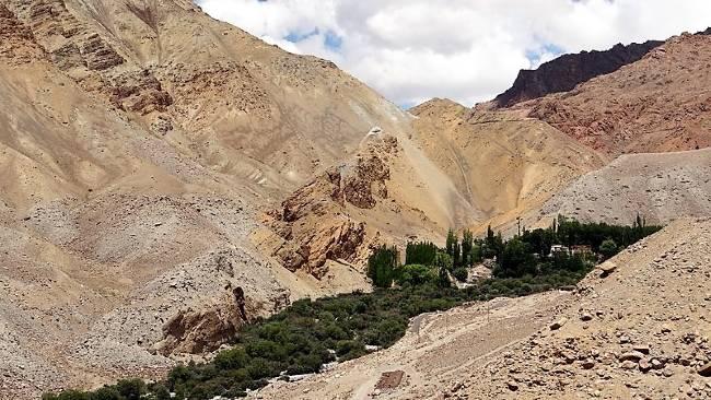 Ladakh oasis de verdure enserrée par des montagnes arides