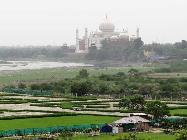 Inde potagers et au loin le Taj Mahal dans la brume