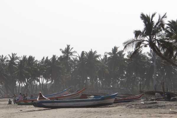 Inde sud plage et cocotiers